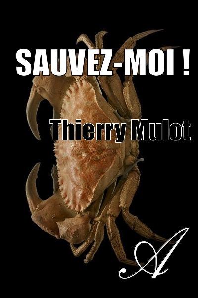 Thierry Mulot - Sauvez-moi !