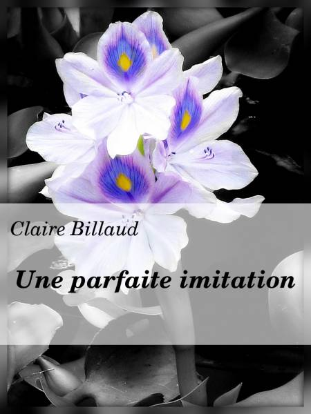 - Une parfaite imitation