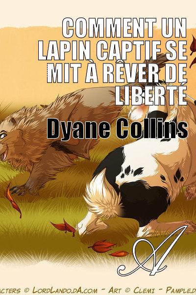 Dyane Collin's - Comment un lapin captif se mit à rêver de liberté
