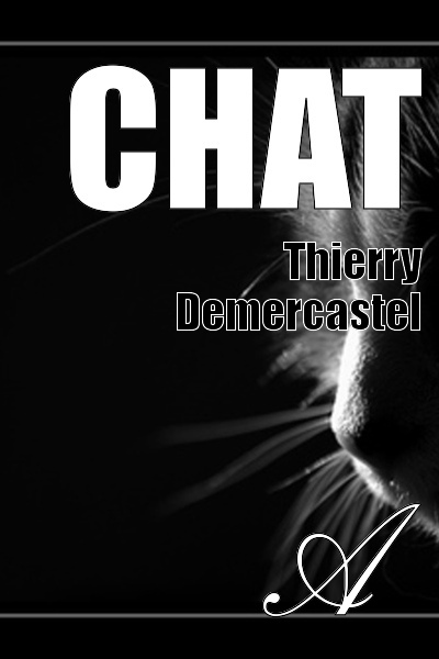 Thierry Demercastel - Chat