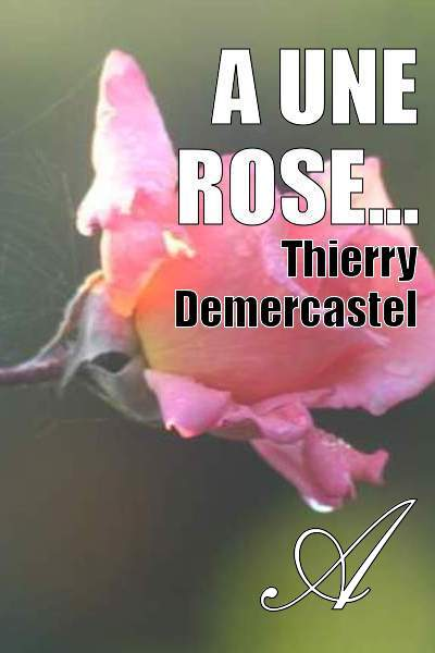 Thierry Demercastel - A une rose...