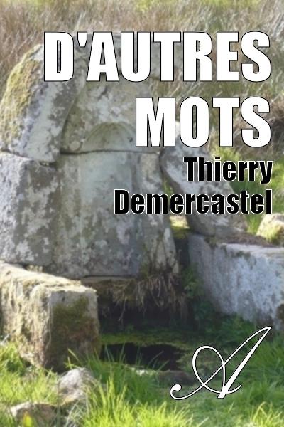 Thierry Demercastel - D'autres mots