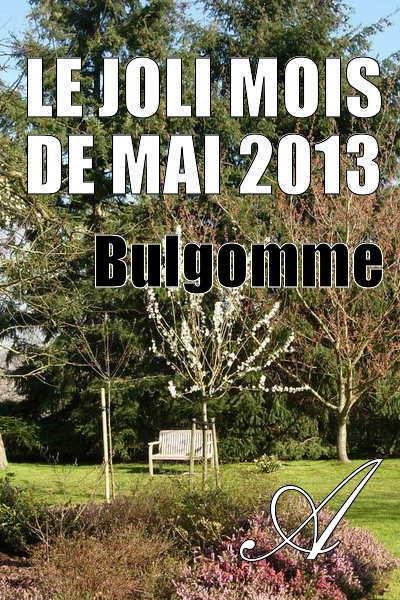 Bulgomme - Le joli mois de mai 2013