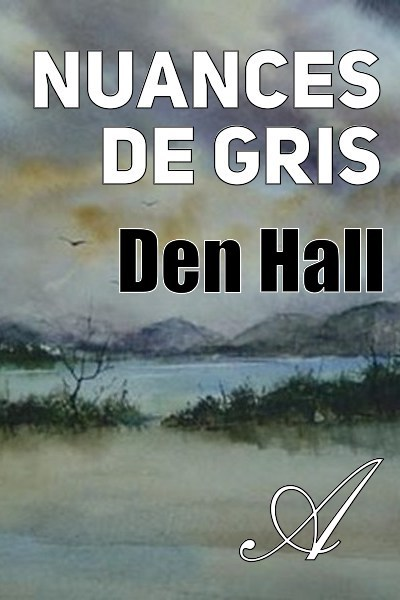 Den Hall - Nuances de gris