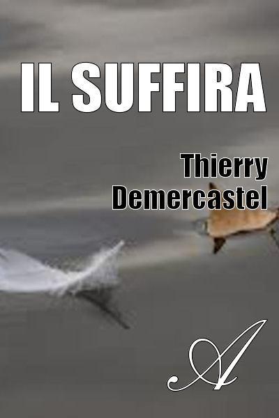 Thierry Demercastel - Il suffira