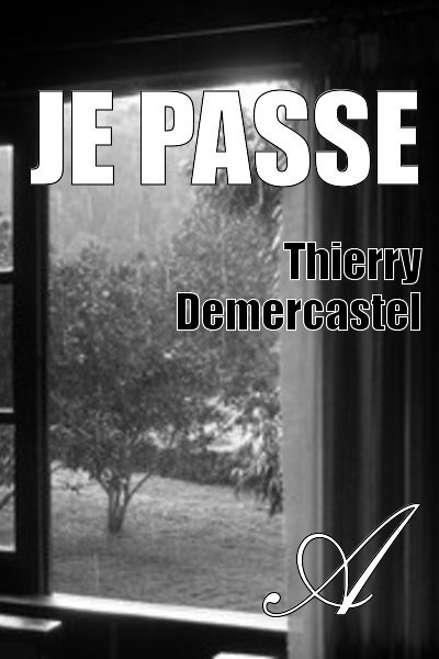Thierry Demercastel - Je passe