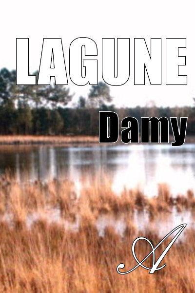 Damy T. - Lagune
